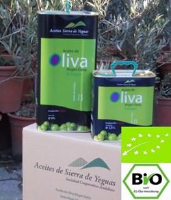 EAN: 4260585511162                    BIO Premium Olivenöl (Arbequina) 5 Liter (2 x 2,5L) Sorte = Arbequina von Biopal®